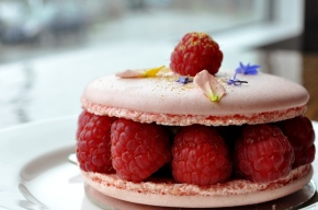 Bliss in a Raspberry Macaron